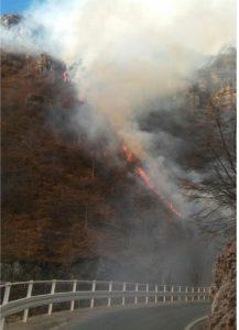 inendio-fiamme