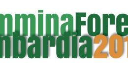 CF_scritta-logo