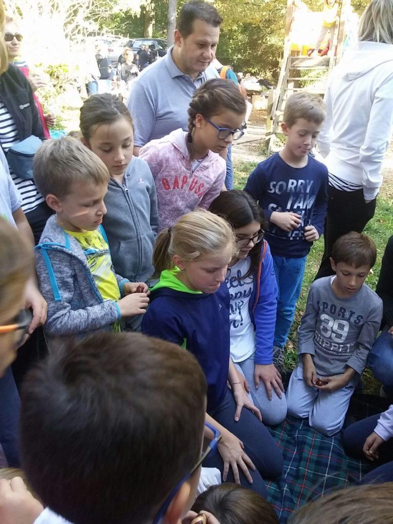 Oratorio domenicale Ballabio raccolta castagne Montalbano (6)