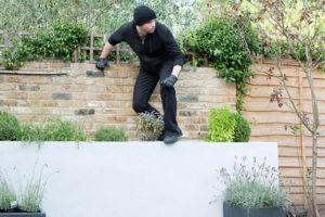 ladro furto giardini