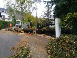 ballabio via fiume albero caduto per maltempo vento pioggia