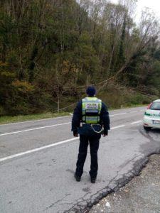 nucleo stradale polizia provinciale poliziotto di spalle discarica ballabio cavi enel caduti
