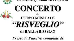 Concerto Bamda Risveglio logo 2019