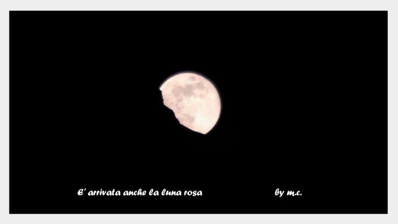 luna rosa m castoldi apr 2019