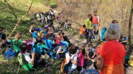 2a uscita Alpinismo Giovanile CAI Ballabio 2019 (1)