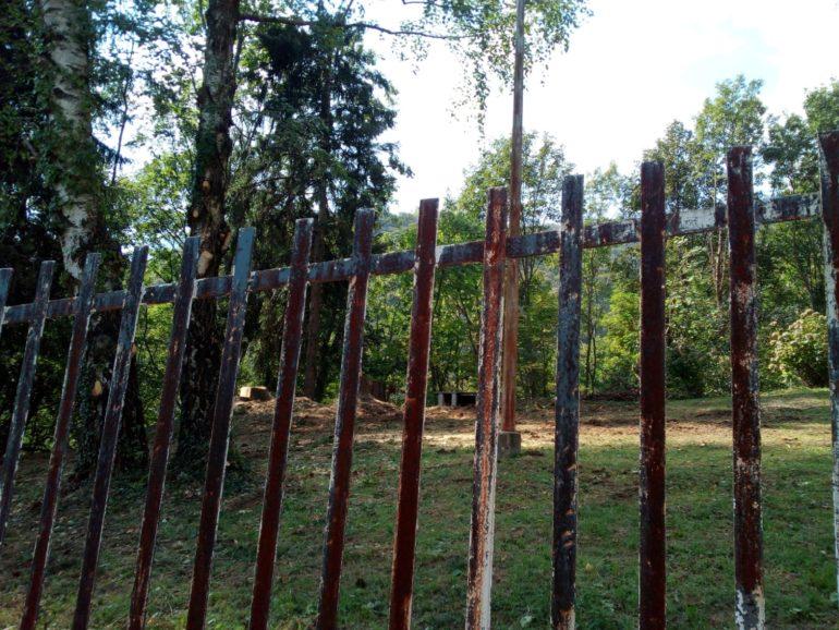 Immagini taglio alberi secolari in ville Ballabio 2019 3