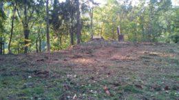 Immagini taglio alberi secolari in ville Ballabio 2019 8