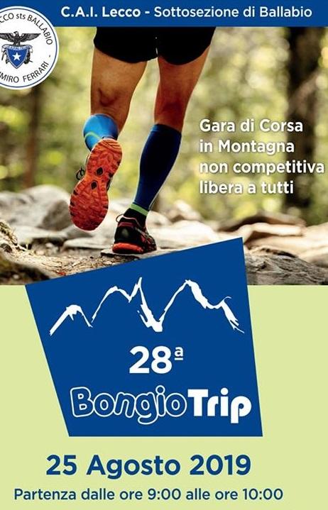 bongio trip 2019
