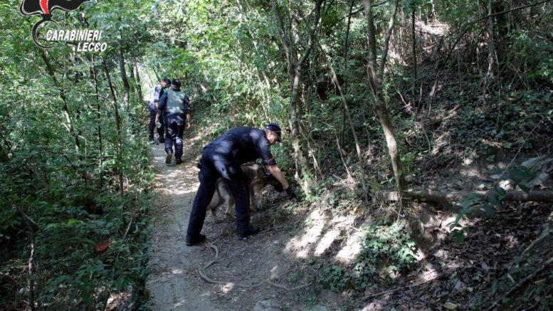 periferie-sicure-carabinieri-spaccio-droga-bosco-cinofili