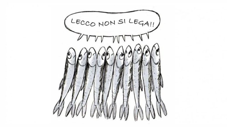 alborelle sardine