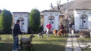 Sant'Antonio Ballabio 12
