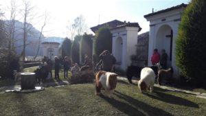 Sant'Antonio Ballabio 8