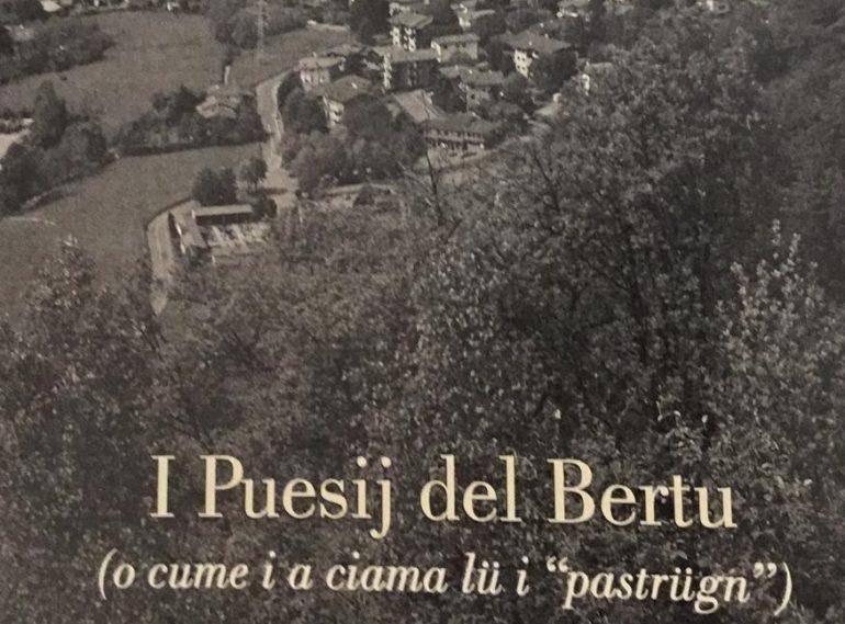 copertina libro Bertu